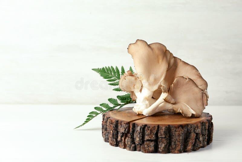 Drewniany kabotażowiec z wyśmienicie organicznie ostrygowymi pieczarkami na stole fotografia royalty free