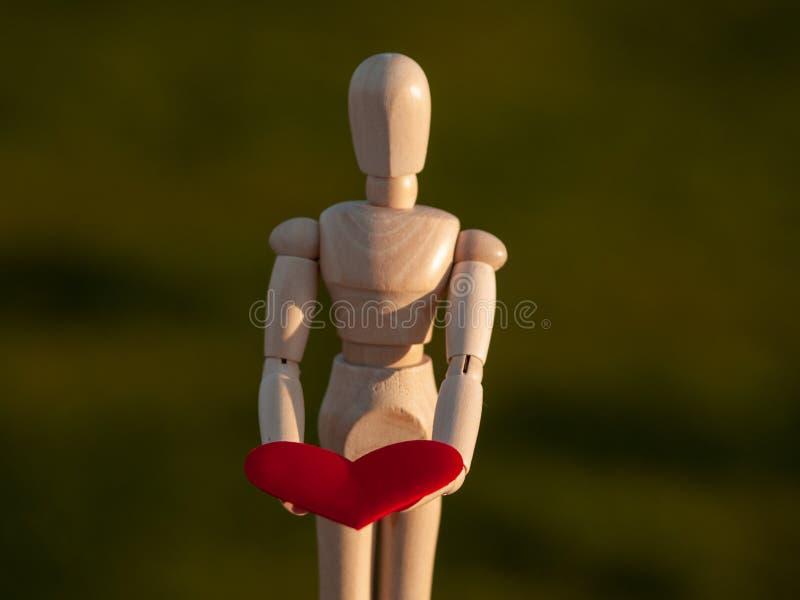 Drewniany mannequin z czerwonym sercem na jego wręcza pojęcie romantyka i miłość zdjęcia stock