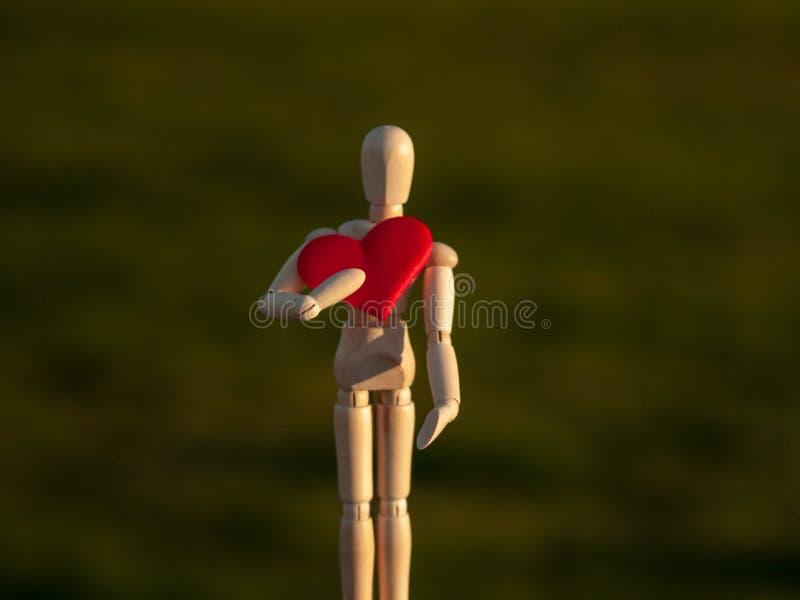 Drewniany mannequin z czerwonym sercem na jego wręcza pojęcie romantyka i miłość obrazy stock