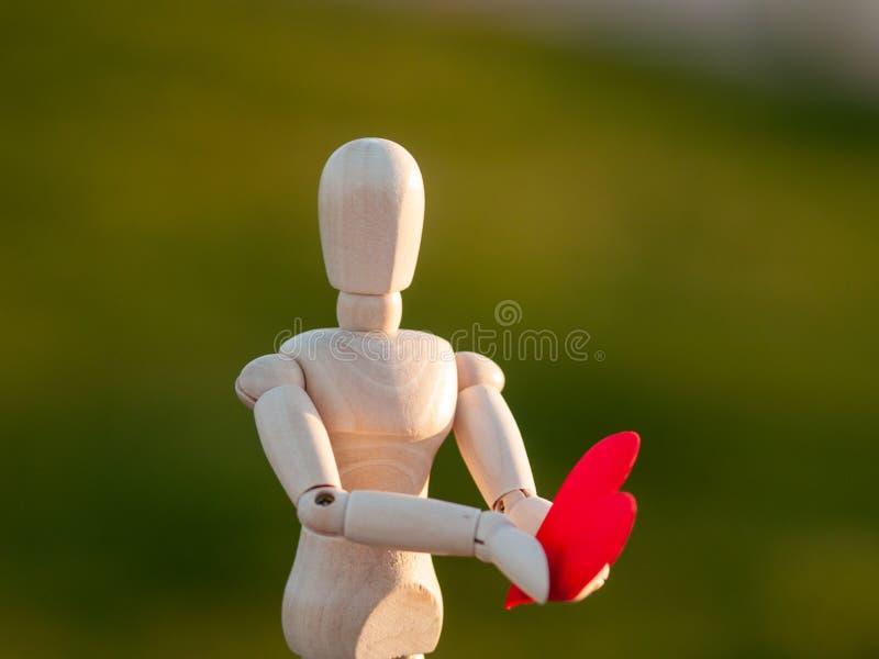 Drewniany mannequin z czerwonym sercem na jego wręcza pojęcie romantyka i miłość obraz royalty free