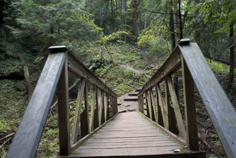 Drewniany most, Hocking wzgórzy stanu las obrazy stock
