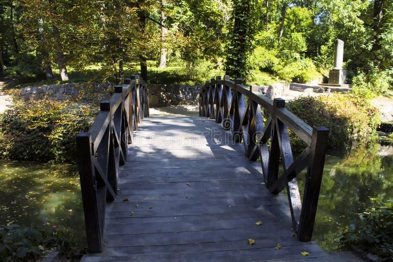 Drewniany most na małej rzece w miasto parku fotografia royalty free