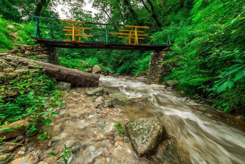 Drewniany most nad siklawą w himalajach - sainj, kullu, himachal, India obrazy stock