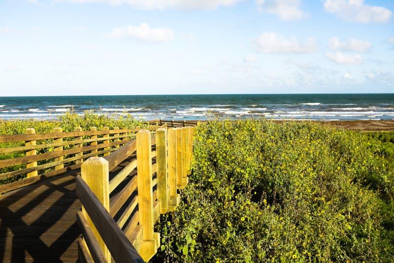 Drewniany most prowadzi ocean obrazy royalty free