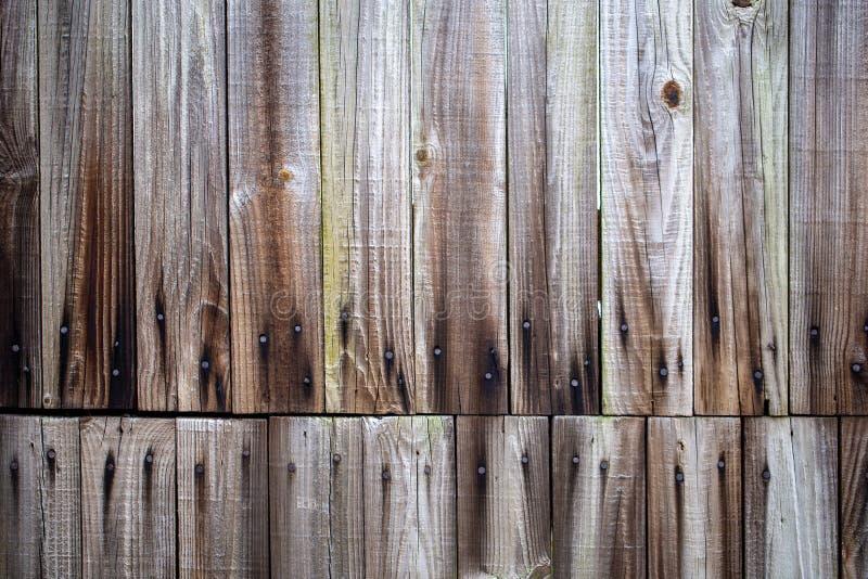Drewniany płotowy stary starzejący się textured drewno z gwoździami fotografia stock