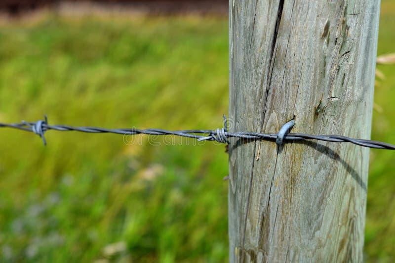 Drewniany Płotowy poczta i drutu kolczastego Zamknięty Up obrazy stock