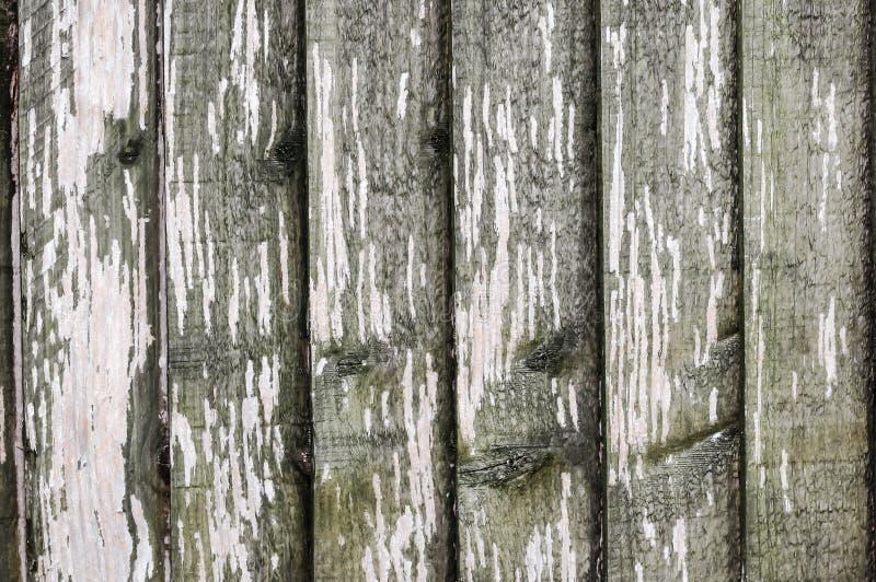 Drewniany panel ściany tekstury grunge zdjęcie royalty free