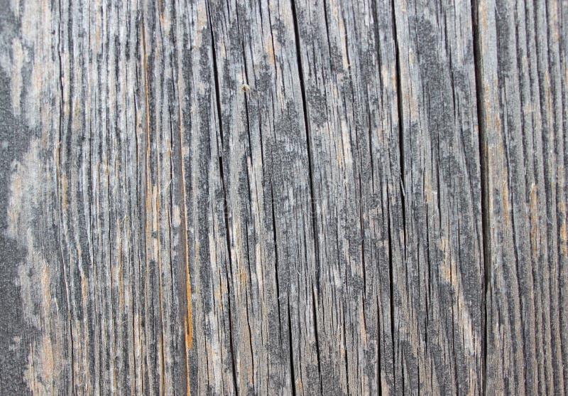 Drewniany podłogowy tło w popielatym zdjęcie stock