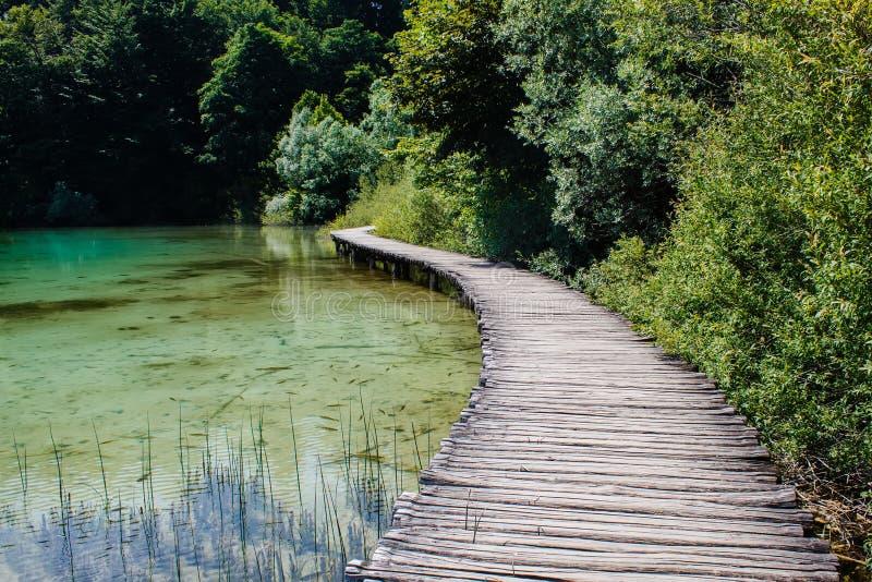 Drewniany przejście otaczający z kryształem - jasna woda i drzewa w parka narodowego Plitvice jeziorach w Chorwacja obraz stock