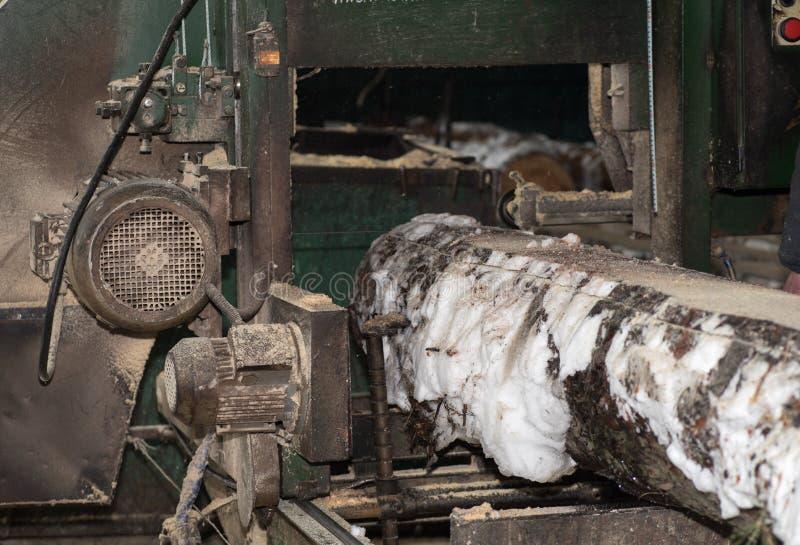drewniany przerób Ciąć loguje się deski W zima procesie drzewo fotografia stock