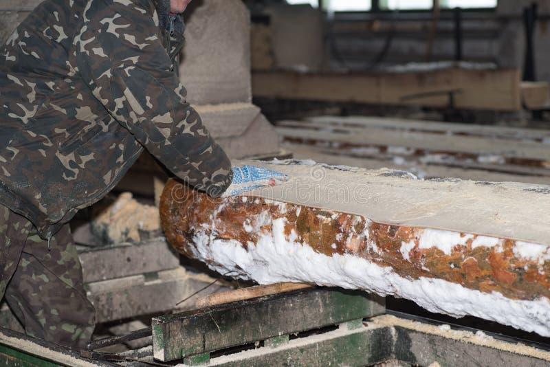 drewniany przerób Ciąć loguje się deski W zima procesie drzewo zdjęcie stock