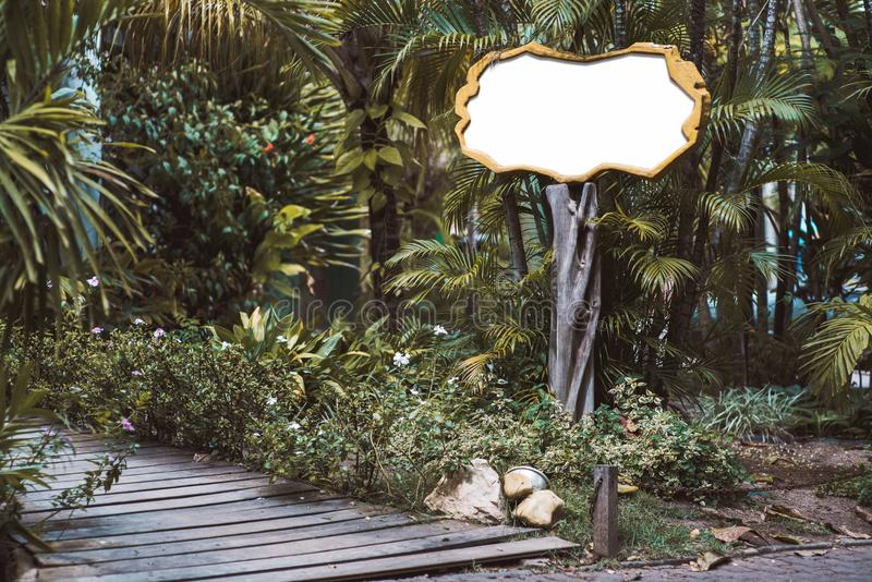 Drewniany pusty signboard egzamin próbny w tropikalnych położeniach obraz stock