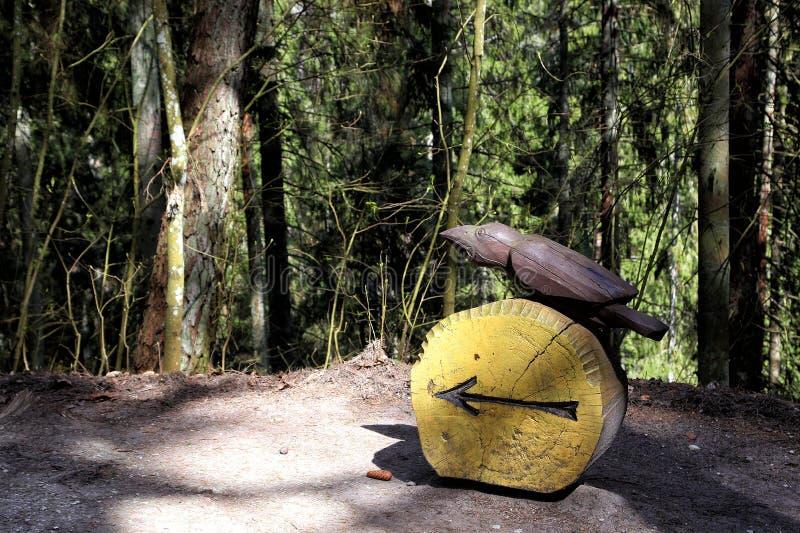 drewniany rzeźba park na czarownicy górze zdjęcie royalty free