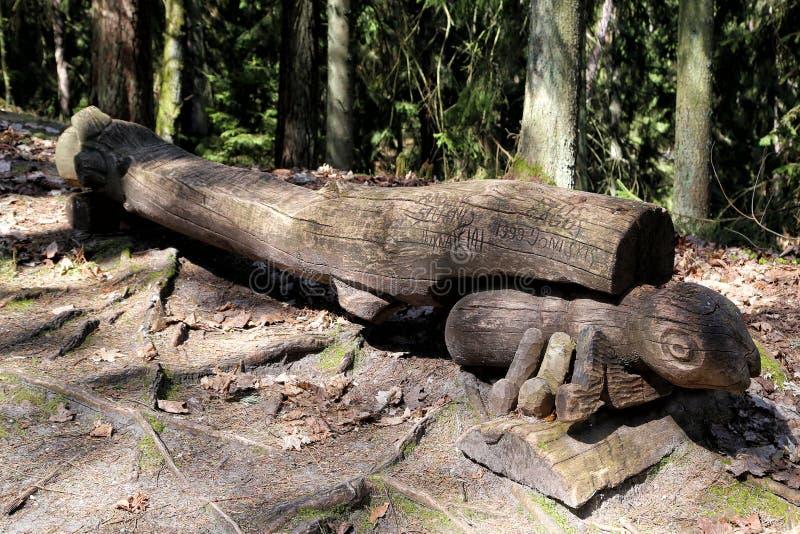 Drewniany rzeźba park na czarownicy górze obraz stock