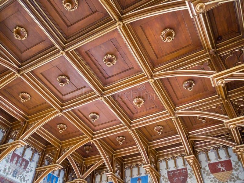 Drewniany rzeźbiący sufit w Stary Grodzki Charles mosta wierza, Praga, czech obraz royalty free