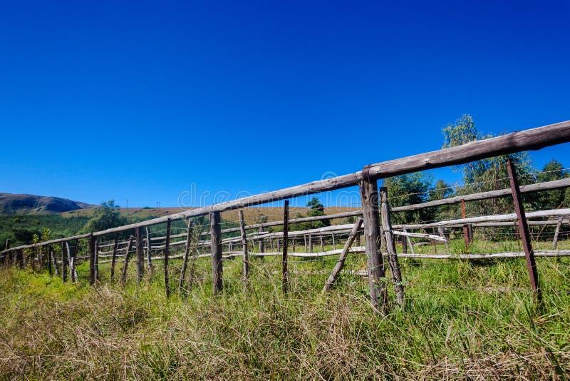 Drewniany słupa drutu fechtunka gospodarstwo rolne obraz royalty free