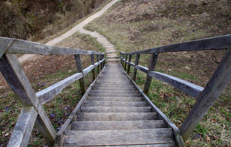 Drewniany schody prowadzi w dół zdjęcie royalty free