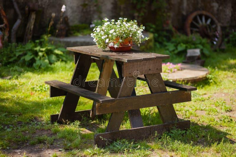 Drewniany stół z kwiatu garnkiem w ogródzie zdjęcia stock