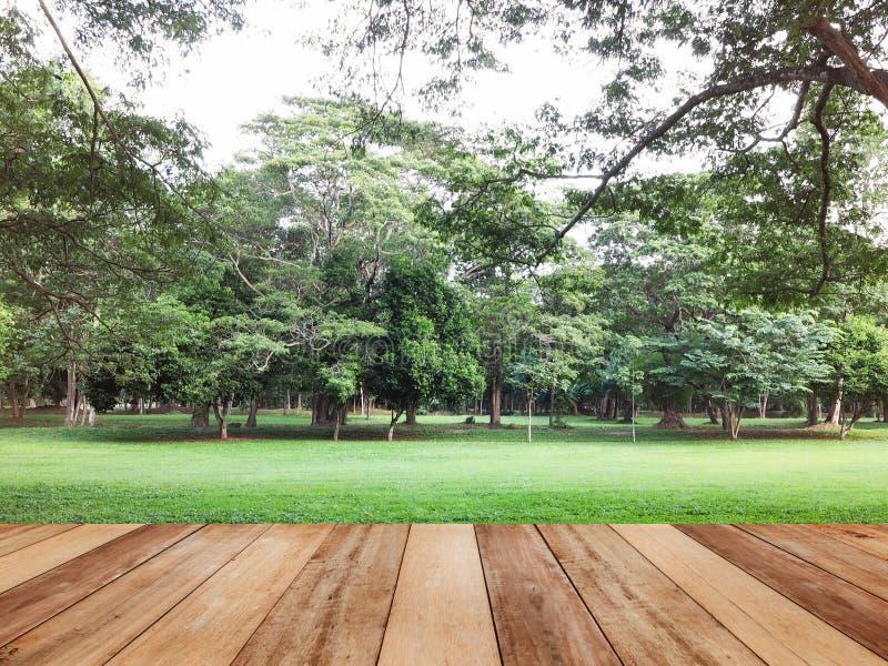 Drewniany stołowy wierzchołek nad żółtym jesień parka tłem obraz stock