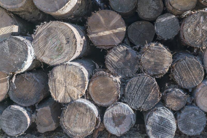 Drewniany szalunek w tartaku obrazy royalty free