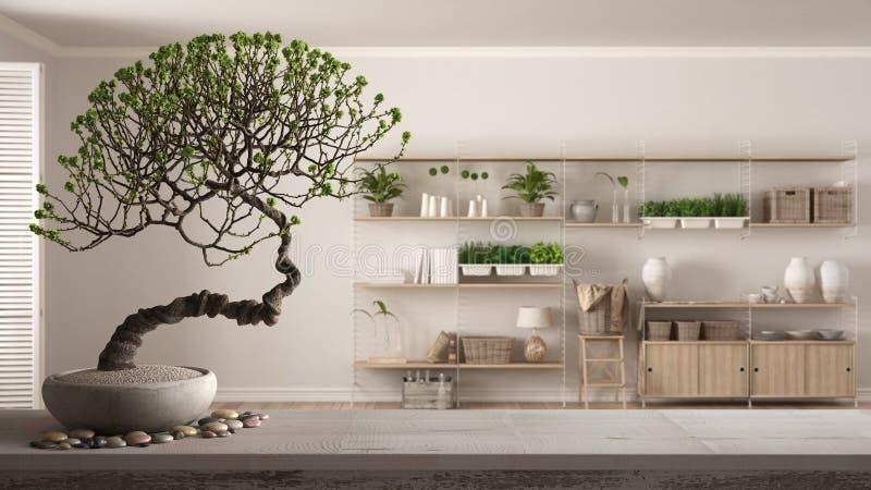 Drewniany szelf stołowy z kamykiem i kwitnącym bonsai, białe kwiaty, nad minimalistycznym salonem z regałami, nowoczesny ilustracji