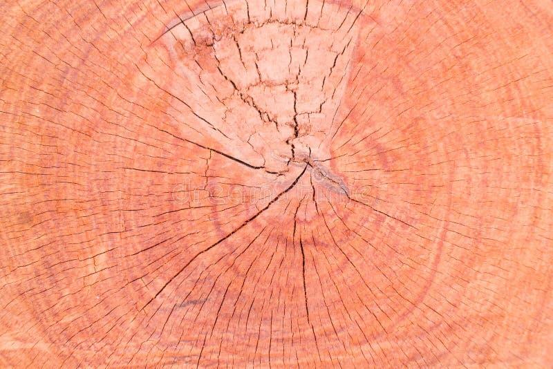 Drewniany tło i textrue zdjęcia stock