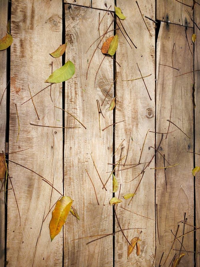 Drewniany tło z zielonym liściem zdjęcia stock
