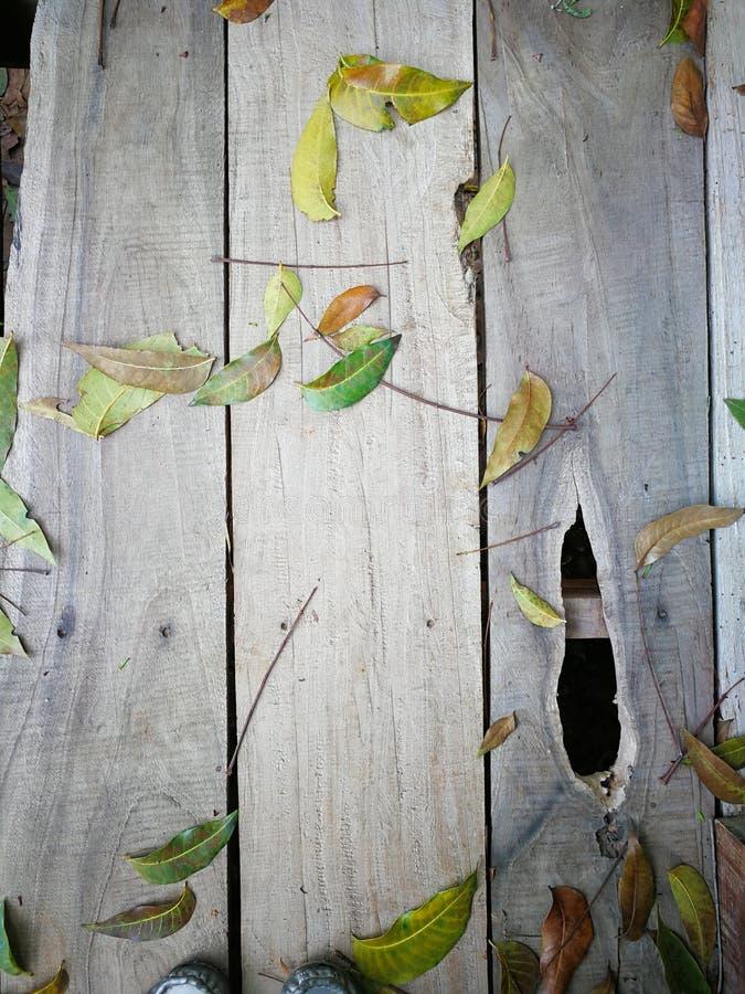 Drewniany tło z zielonym liściem zdjęcie stock