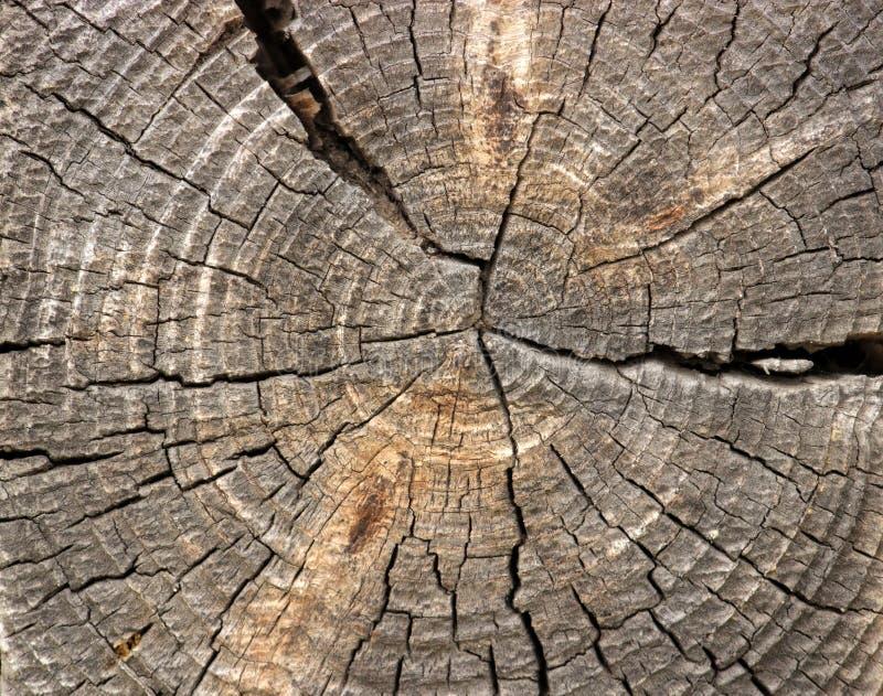 Download Drewniany tło zdjęcie stock. Obraz złożonej z bela, stary - 53785076