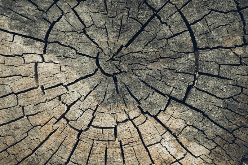 Drewniany tekstury lub drewna t?o Starego brązu drewna rżnięta tekstura Grunge tła ciemny zbliżenie Szczegółowa tekstura krakingo obraz royalty free