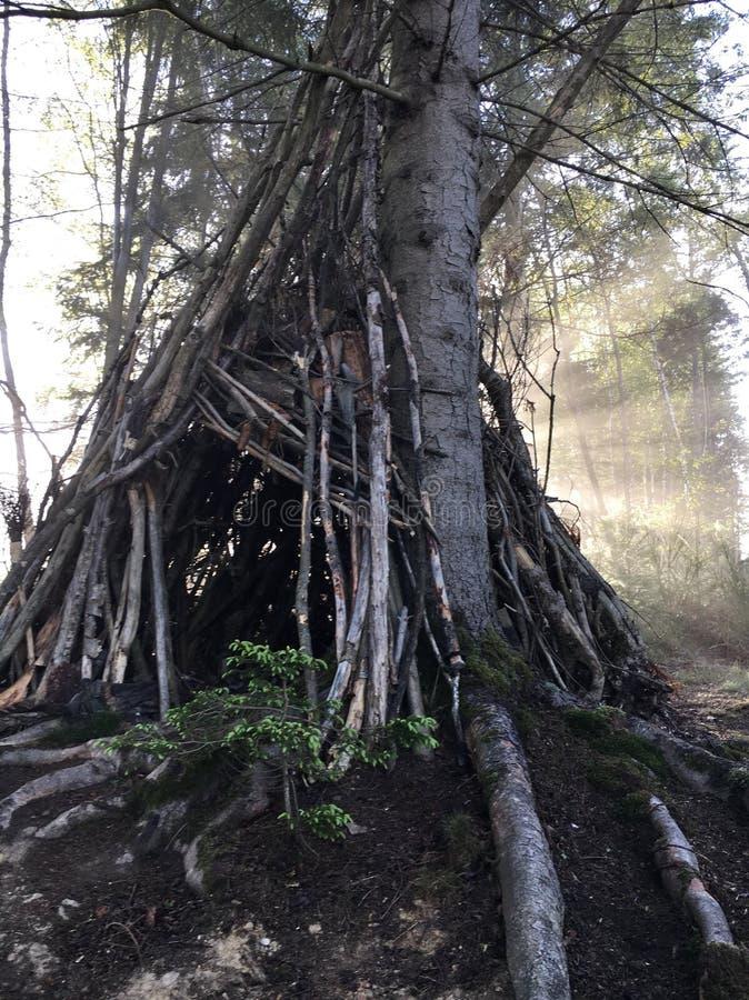 Drewniany wigwam w lesie obraz royalty free