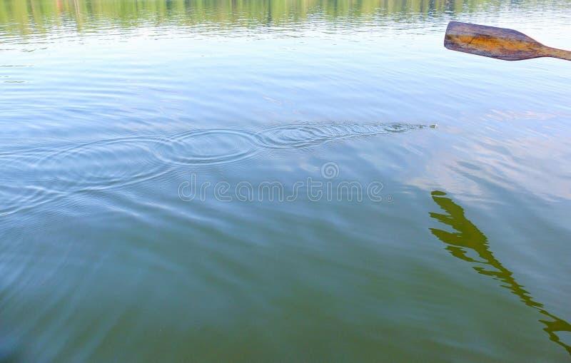 Drewniany wiosło, wod krople i czochry, zdjęcie royalty free