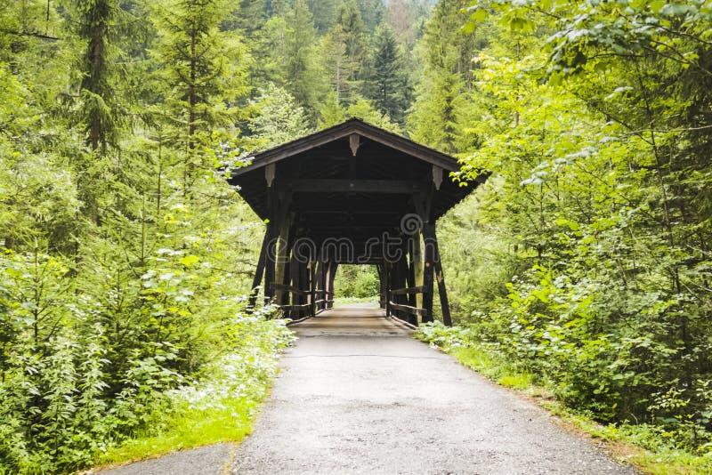 Drewniany zakrywający bridżowy skrzyżowanie rzeka otaczał lasem fotografia stock