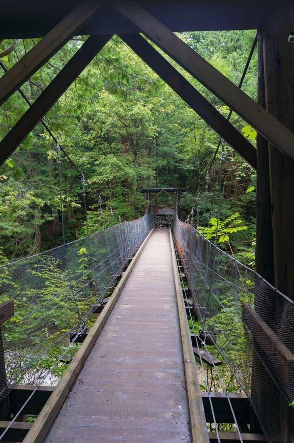 Drewniany zawieszenie most w lesie zdjęcia stock