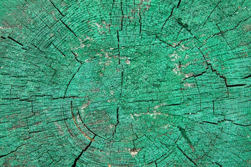Drewniany zobaczył cięcie maluje w zielonym kolorze, tło tekstura fotografia stock