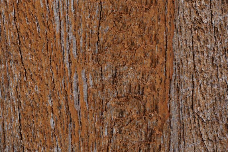 Drewno ścienna tekstura (Uszkadzająca) obrazy stock