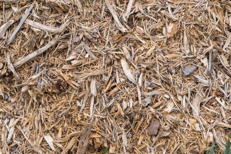 Drewno świstka stosu tekstury tło obraz stock