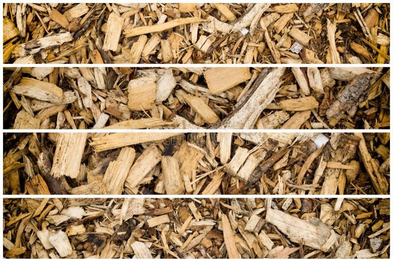Drewno barkentyny układu scalonego chochołu kolekcja zdjęcie royalty free