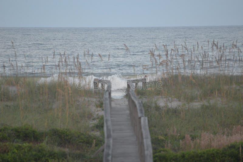 Drewno droga przemian kończy przy wzdłuż plaży wypełniającym z surfingowów facetami zdjęcie royalty free