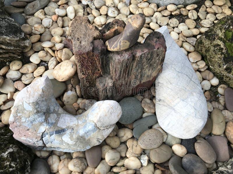 Drewno i skały w ogródzie obrazy stock