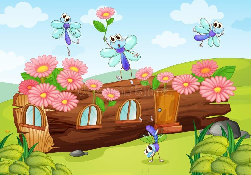 Drewno komarnicy dom i ilustracji