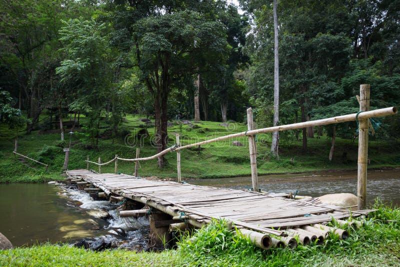 Drewno most przez chanel obrazy royalty free
