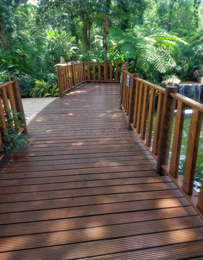 Drewno most z krzakami i drzewami fotografia royalty free