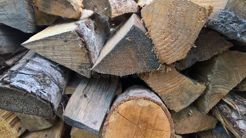 drewno na zbierający fałdowy bękart obraz stock