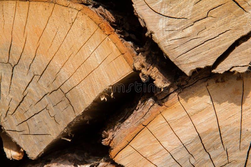 Drewno notuje zakończenie fotografia stock