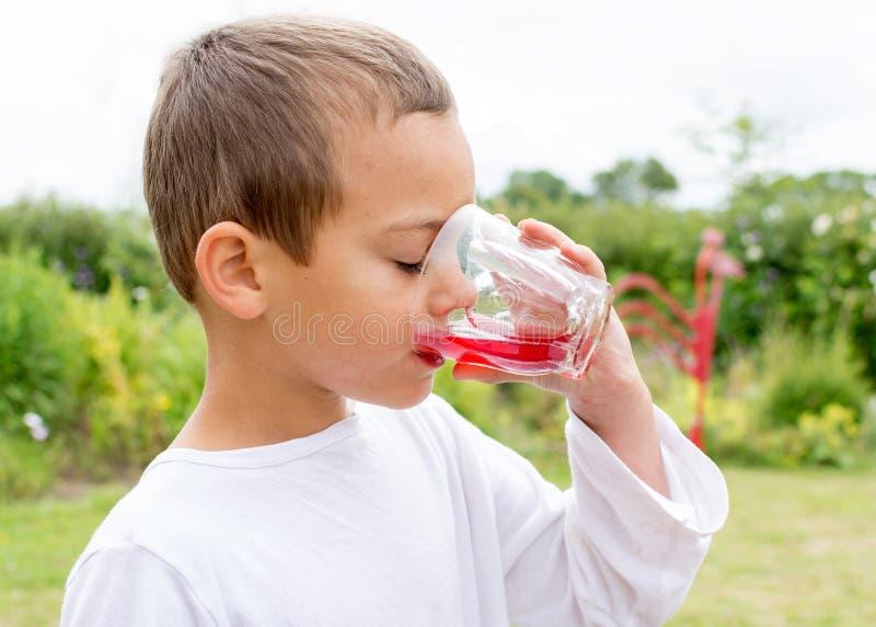dricka fruktsaft för barn fotografering för bildbyråer