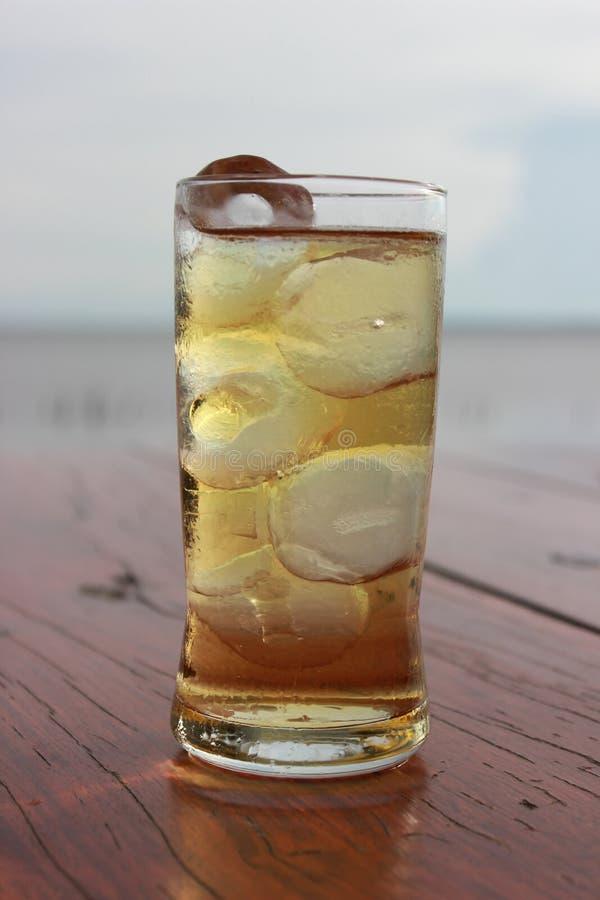 Dricka i ferie royaltyfria bilder
