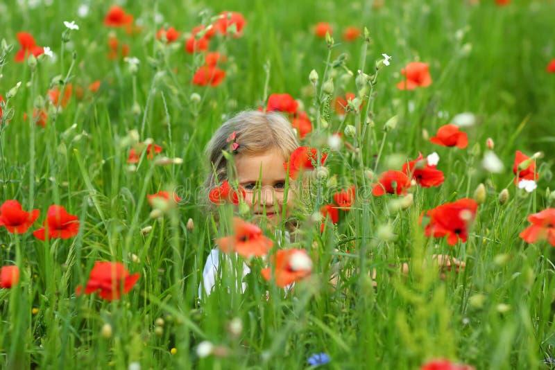 Drie éénjarigen peutermeisje het verbergen op het de zomergebied van bloeiende papavers stock fotografie