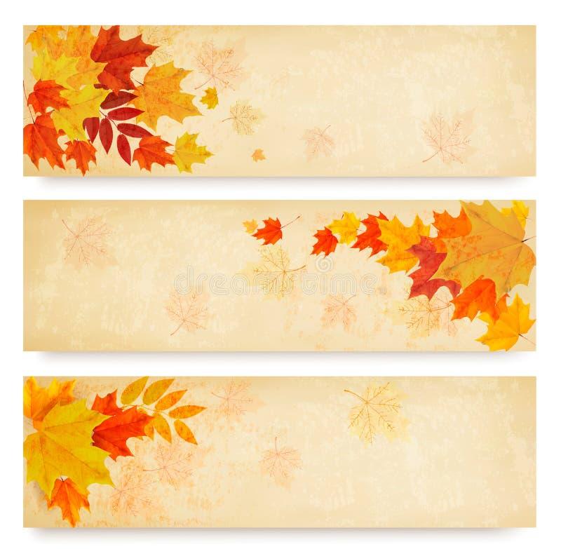 Drie abstracte de herfstbanners met kleurenbladeren royalty-vrije illustratie