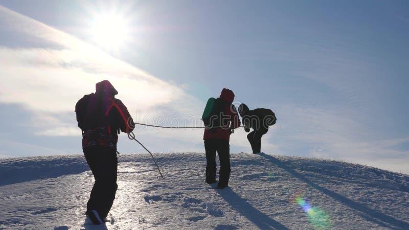 Drie Alpenists beklimmen kabel op sneeuwberg De toeristen werken samen als team schuddende hoogten die moeilijkheden overwinnen royalty-vrije stock fotografie